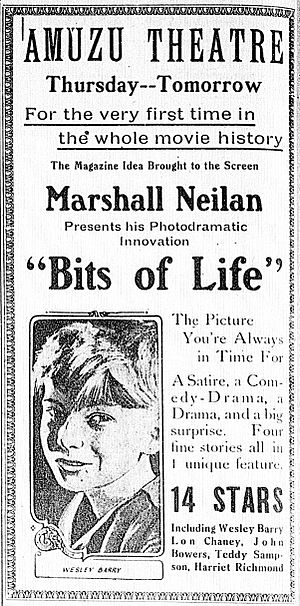 Bits of Life - Newspaper advertisement.