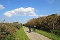Blankenberge-Zeebrugge Cycling Trail R02.jpg