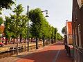 Bomen en straat aan de Luts..JPG