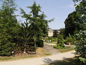 Botanischer Garten Münster - View onto the castle