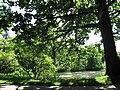 Botanischer Garten See2.jpg