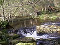 Boundary fence over Aira Beck, Watermillock township, Matterdale CP - geograph.org.uk - 279941.jpg