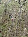 Brian Bennett Ziplining (14162269215).jpg