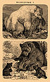 Brockhaus and Efron Encyclopedic Dictionary b36 864-1.jpg