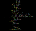 Brownian tree vertical large.png