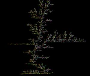 Brownian tree - A Brownian tree example