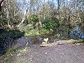Brownsea Island nature reserve (33073911744).jpg