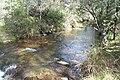 Buckland River, Victoria.jpg