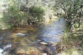 Buckland River (Victoria) - The Buckland River at Beveridges Station, in the Mount Buffalo National Park