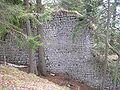 Burg Hohenwaldeck 4.jpg