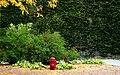 Buried (6212808959).jpg