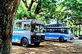 Buses waiting at the Bus station at the university of Rajshahi.jpg