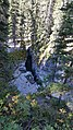 By ovedc - Maligne Canyon - 08.jpg