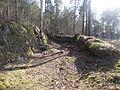Bygdoy oslo IMG 2908 geology bygdoy kulturmiljo forskriftsfredet.JPG