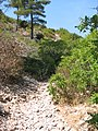 Calanques de Cassis (F) - panoramio.jpg