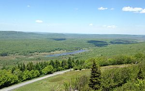 Canaan Valley - View of the northern half of Canaan Valley from atop Harmon Knob.