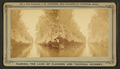 Canal in the southern Part of Florida, from Robert N. Dennis collection of stereoscopic views.png