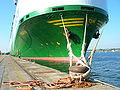 Car carrier moored in Southampton.jpg
