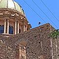 Caracara cheriway - Dolores Hidalgo, Gto.jpg