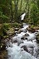 Cascata da Cabreia - Sever do Vouga.jpg