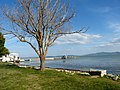 Castiglione del Lago - Lago Trasimeno 5 Pier.jpg