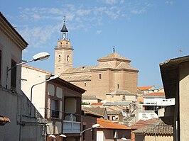 Cebolla Toledo Wikipedia La Enciclopedia Libre