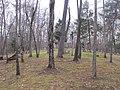 Cemetery - front - panoramio.jpg