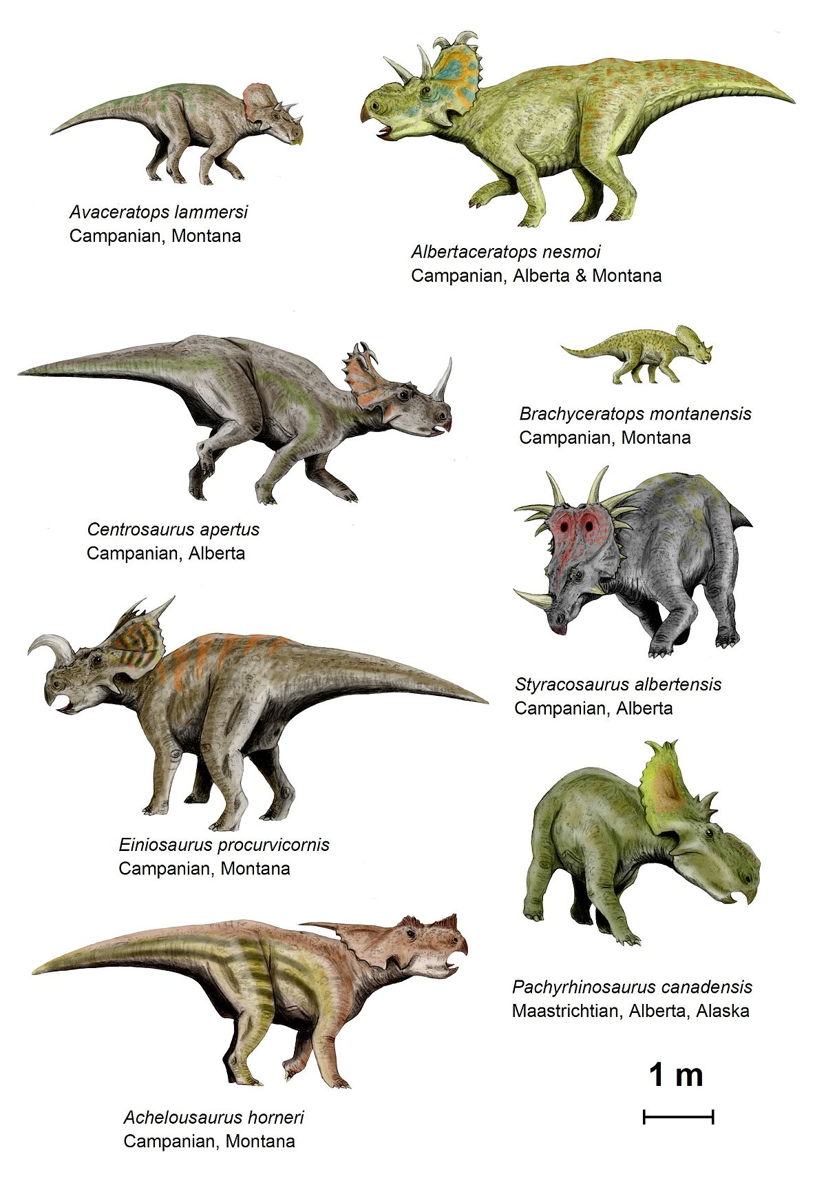 Dinosaur behavior wikipedia - Dinosaure marin carnivore ...