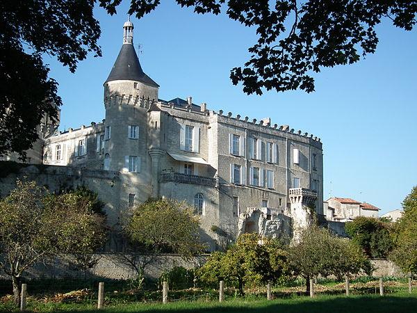 Le château de Jonzac vu depuis les berges de la Seugne.