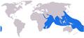 Cheilinus undulatus distribution.png