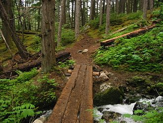Chilkoot Trail - Between Finnegan's Point and Canyon City, 2004