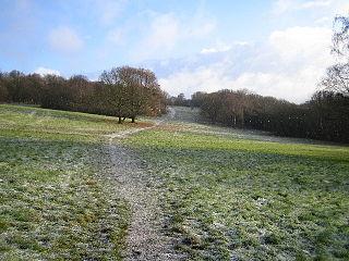 Chorleywood Common