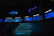 En el acuario - 3 1
