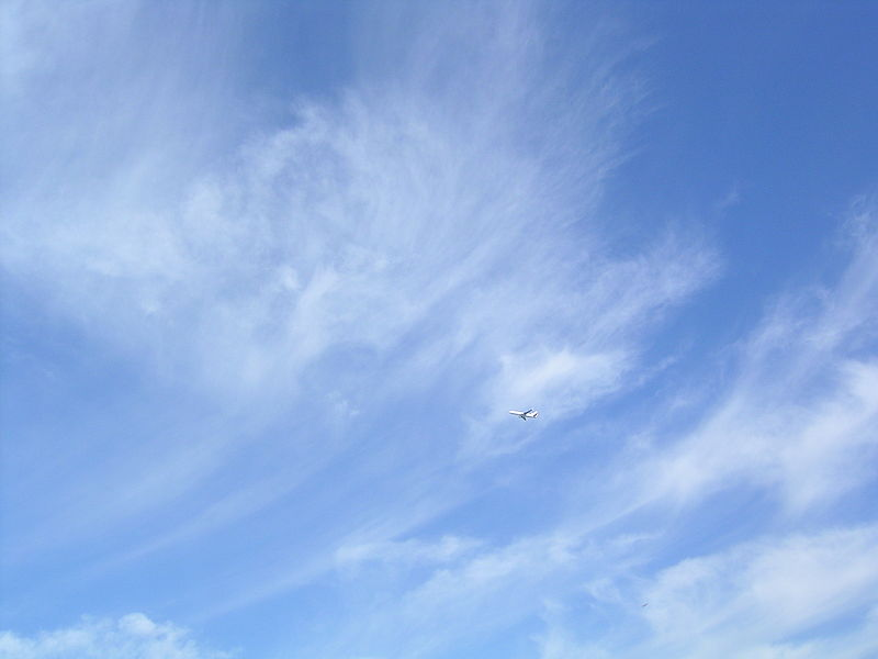File:Cirrus with aeroplane.JPG