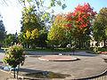 City garden Kolpino Autumn.JPG