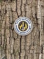 City of Baltimore Watershed Property Boundary Marker.jpg
