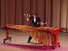 Classical Marimba player.jpg