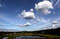 Clouds by Joseph Lazer.jpg