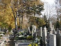 Cmentarz Zarzew Lodz.JPG
