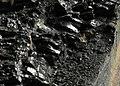 Coal (8189585283).jpg