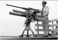 Coast Guard dual mount, for a 50 cal BMG and a breech loading mortar.png