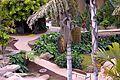 Colección Palmetum de Santa Cruz de Tenerife 08.JPG