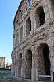 Coliseo 2013 009.jpg