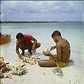 Collectie Nationaal Museum van Wereldculturen TM-20029678 Kark¾vissers halen de weekdieren uit de schelp bij de lagune Lac Bonaire Boy Lawson (Fotograaf).jpg