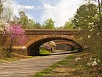 Colonial Parkway with springtime blossoms
