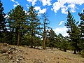 Colorado 2013 (8569918451).jpg