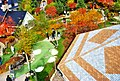 Colorful autumn trees seen from above - panoramio.jpg