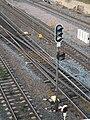 Colour light railway signal in Finland.jpg