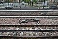 Corbeil-Essonnes - 2019-09-05 - IMG 0011.jpg
