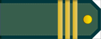 Corporal rank insignia (North Korean police).png